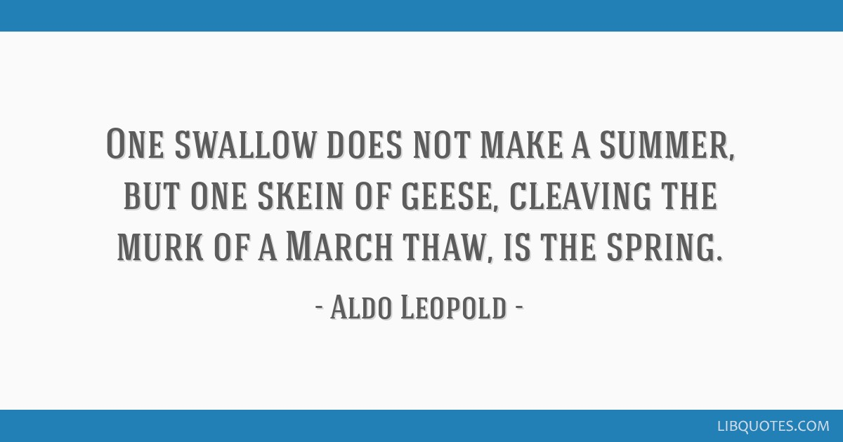 One swallow does not make a summer, but one skein of geese, cleaving the murk of a March thaw, is the spring.