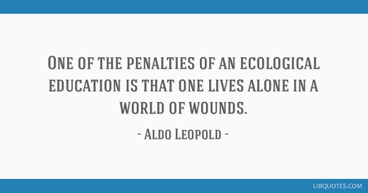 One of the penalties of an ecological education is that one lives alone in a world of wounds.