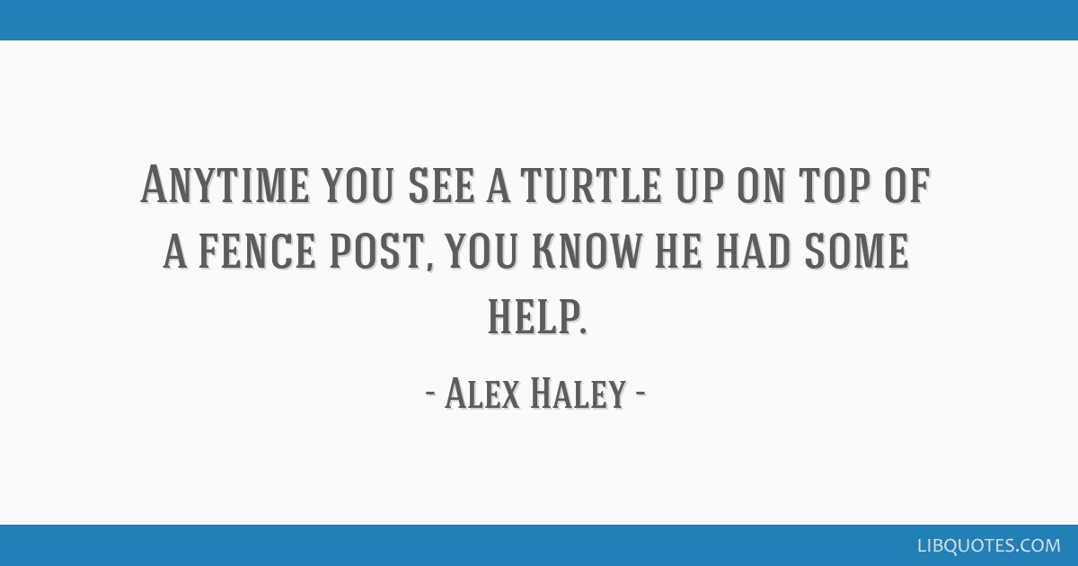 Anytime you see a turtle up on top of a fence post, you know he had some help.