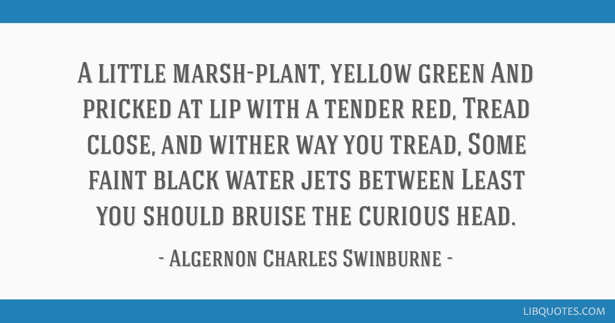 A little marsh-plant, yellow green And pricked at lip with a tender red, Tread close, and wither way you tread, Some faint black water jets between...