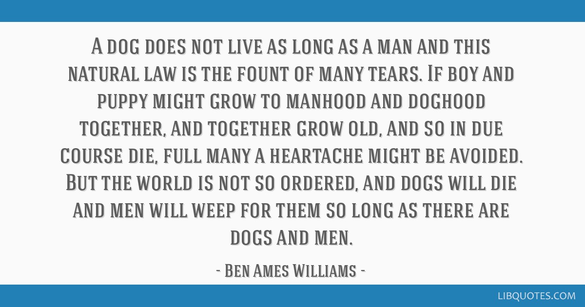 A dog does not live as long as a man and this natural law is the
