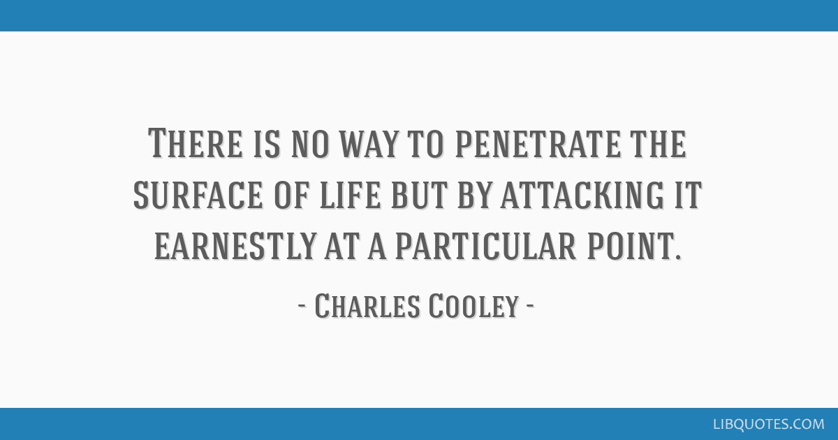 There is no way to penetrate the surface of life but by attacking it earnestly at a particular point.