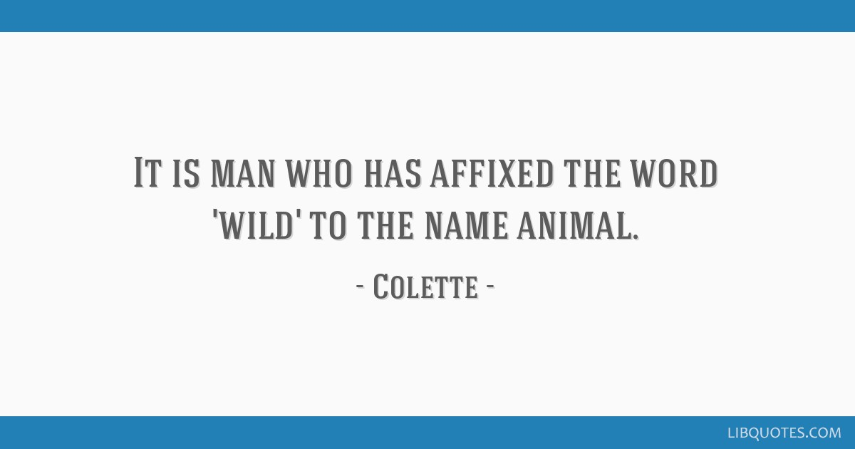 It is man who has affixed the word 'wild' to the name animal.