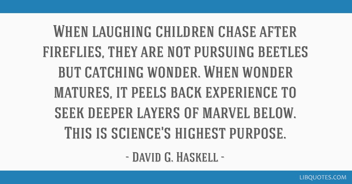 When Laughing Children Chase After Fireflies They Are Not Pursuing