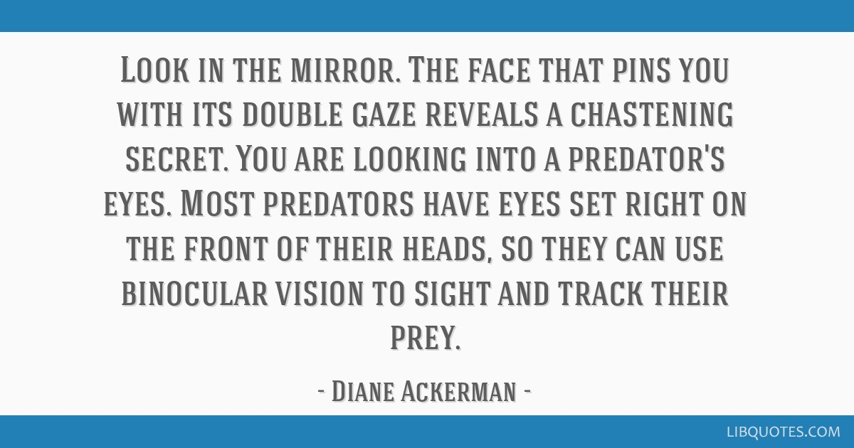 Look in the mirror. The face that pins you with its double gaze reveals a chastening secret. You are looking into a predator's eyes. Most predators...