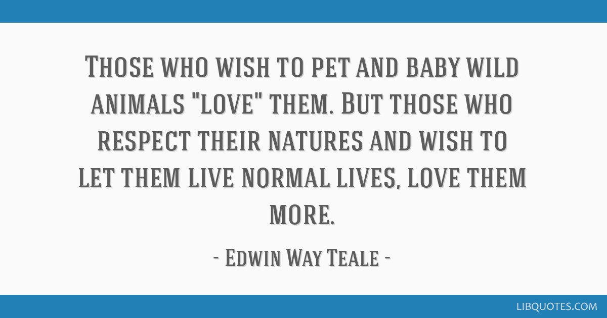 Those who wish to pet and baby wild animals love them. But those who respect their natures and wish to let them live normal lives, love them more.