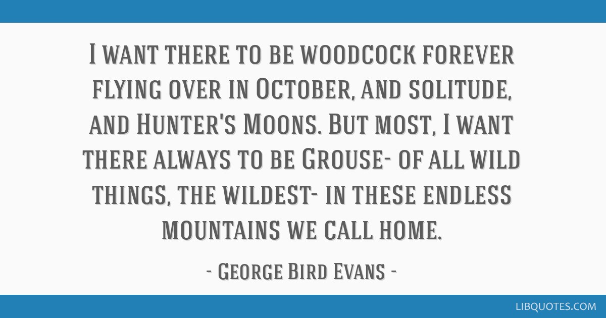 I want there to be woodcock forever flying over in October, and solitude, and Hunter's Moons.