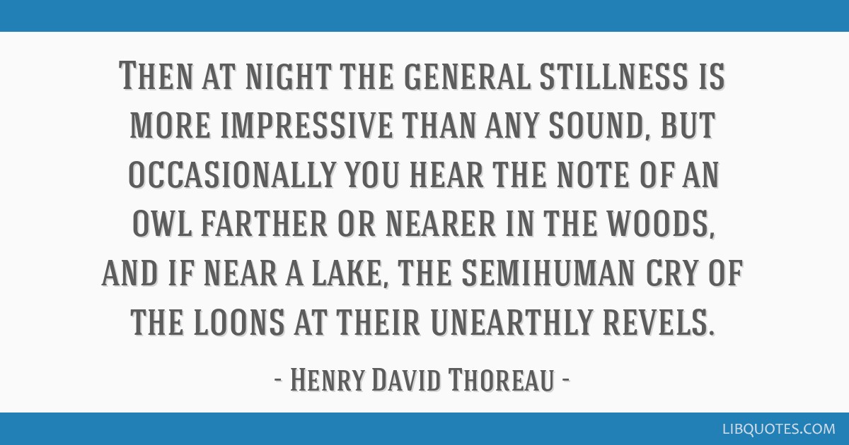 Then at night the general stillness is more impressive than any sound, but occasionally you hear the note of an owl farther or nearer in the woods,...