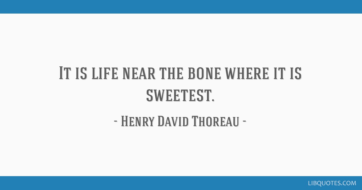 It is life near the bone where it is sweetest.