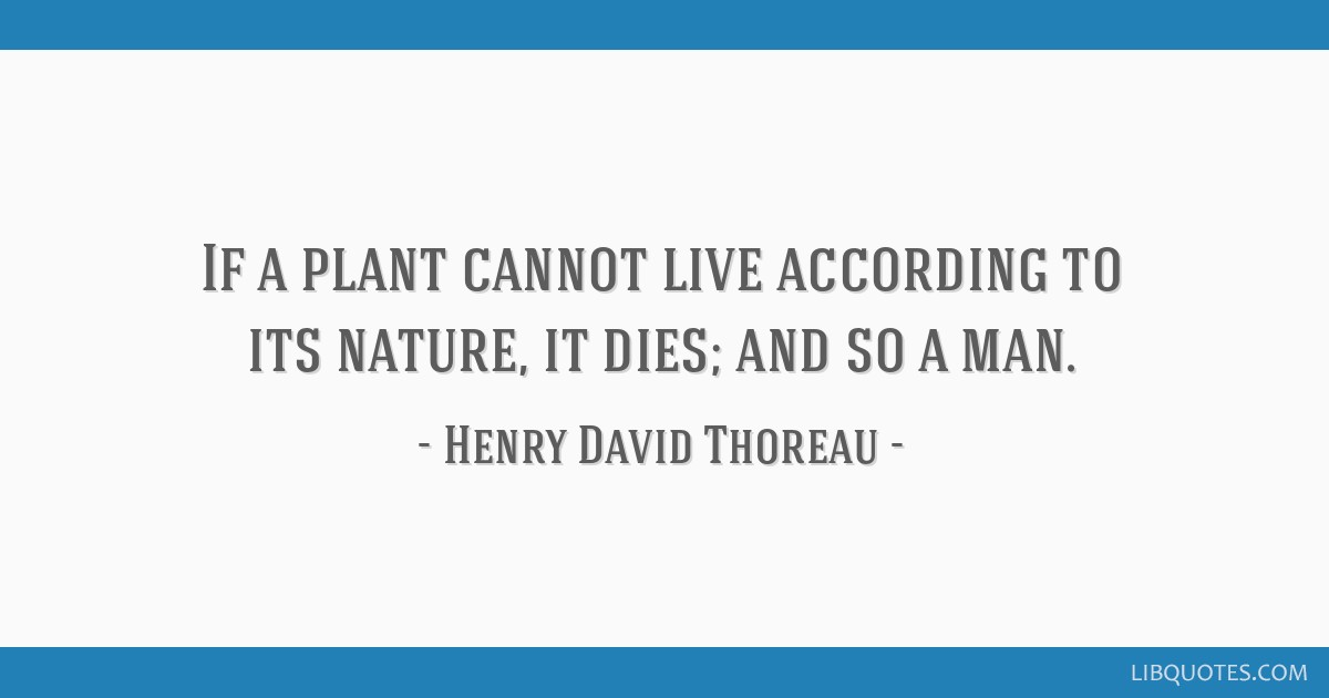 If a plant cannot live according to its nature, it dies; and so a man.