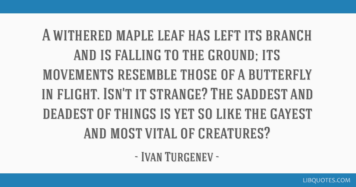 A withered maple leaf has left its branch and is falling to the ground; its movements resemble those of a butterfly in flight. Isn't it strange? The...