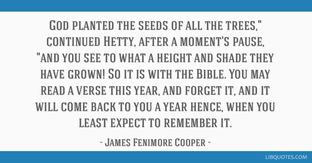 God planted the seeds of all the trees, continued Hetty, after a moment's pause, and you see to what a height and shade they have grown! So it is...