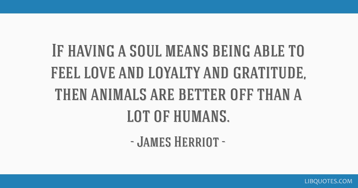 If having a soul means being able to feel love and loyalty and gratitude, then animals are better off than a lot of humans.