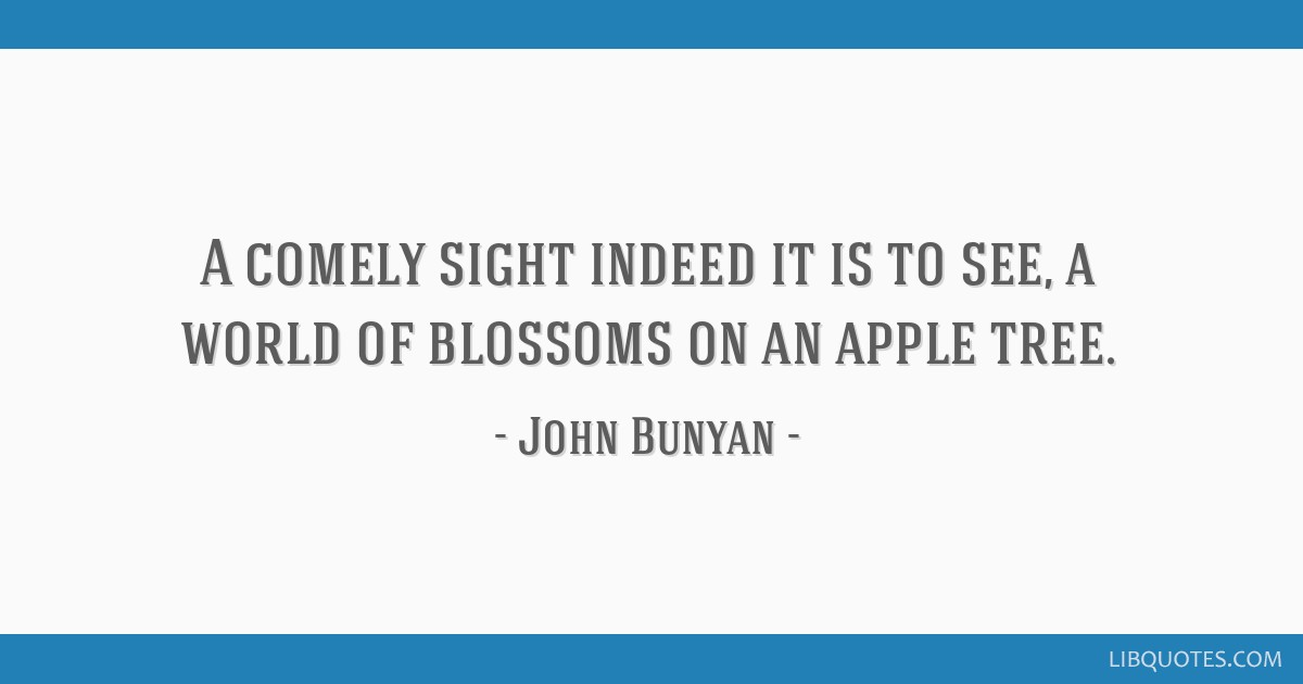A comely sight indeed it is to see, a world of blossoms on an apple tree.