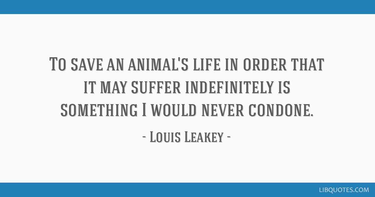 To save an animal's life in order that it may suffer indefinitely is something I would never condone.