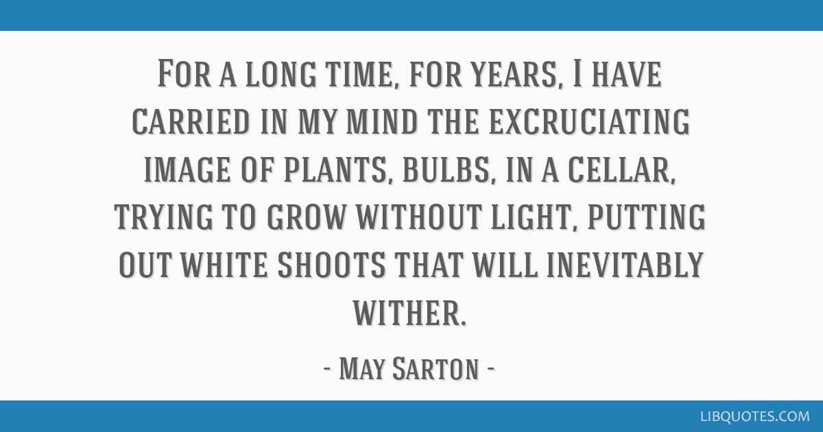For a long time, for years, I have carried in my mind the excruciating image of plants, bulbs, in a cellar, trying to grow without light, putting out ...