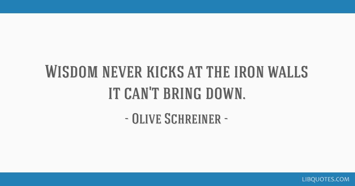 Wisdom never kicks at the iron walls it can't bring down.