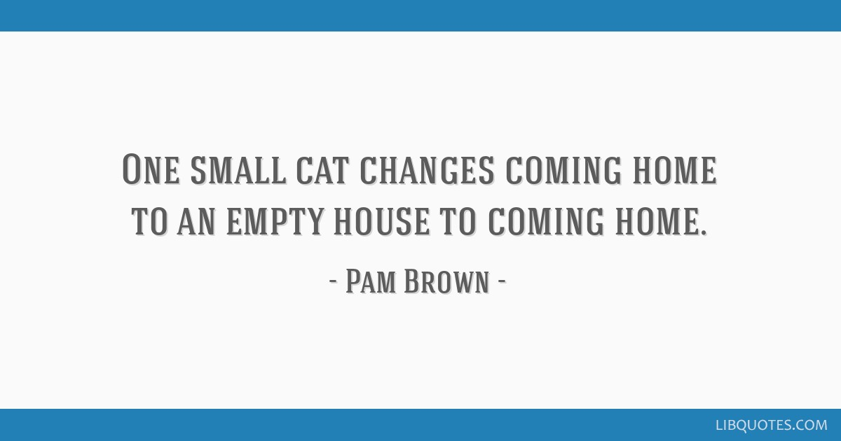 One small cat changes coming home to an empty house to