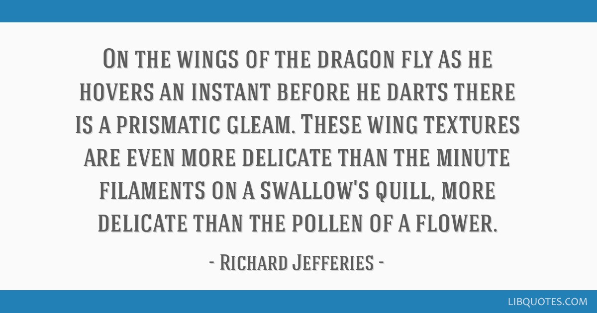 On the wings of the dragon fly as he hovers an instant before he darts there is a prismatic gleam. These wing textures are even more delicate than...
