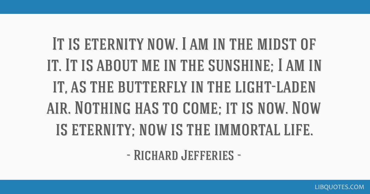 It is eternity now. I am in the midst of it. It is about me in the sunshine; I am in it, as the butterfly in the light-laden air. Nothing has to...
