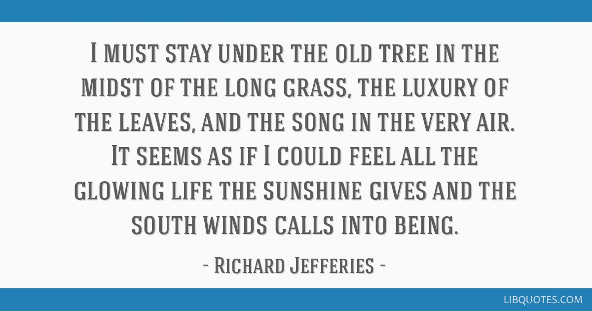 I must stay under the old tree in the midst of the long grass, the luxury of the leaves, and the song in the very air. It seems as if I could feel...