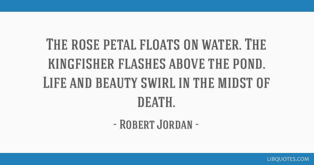 The rose petal floats on water  The kingfisher flashes above