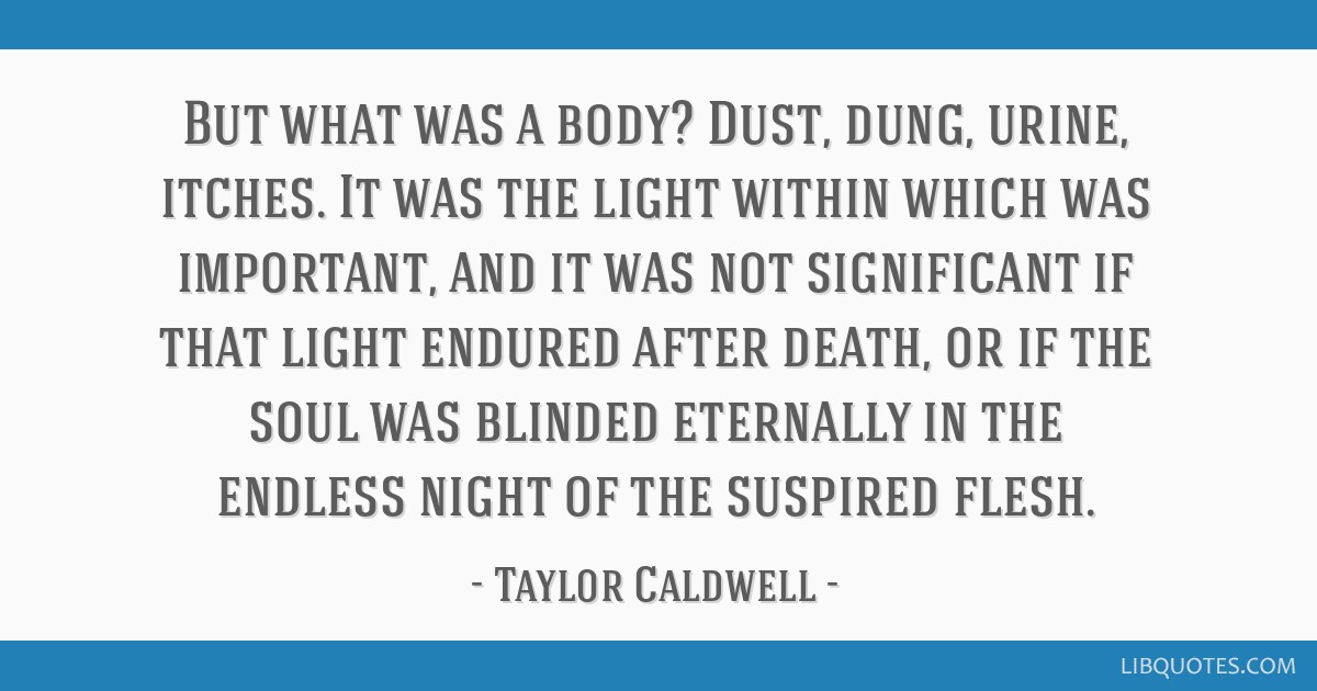 But what was a body? Dust, dung, urine, itches. It was the light within which was important, and it was not significant if that light endured after...