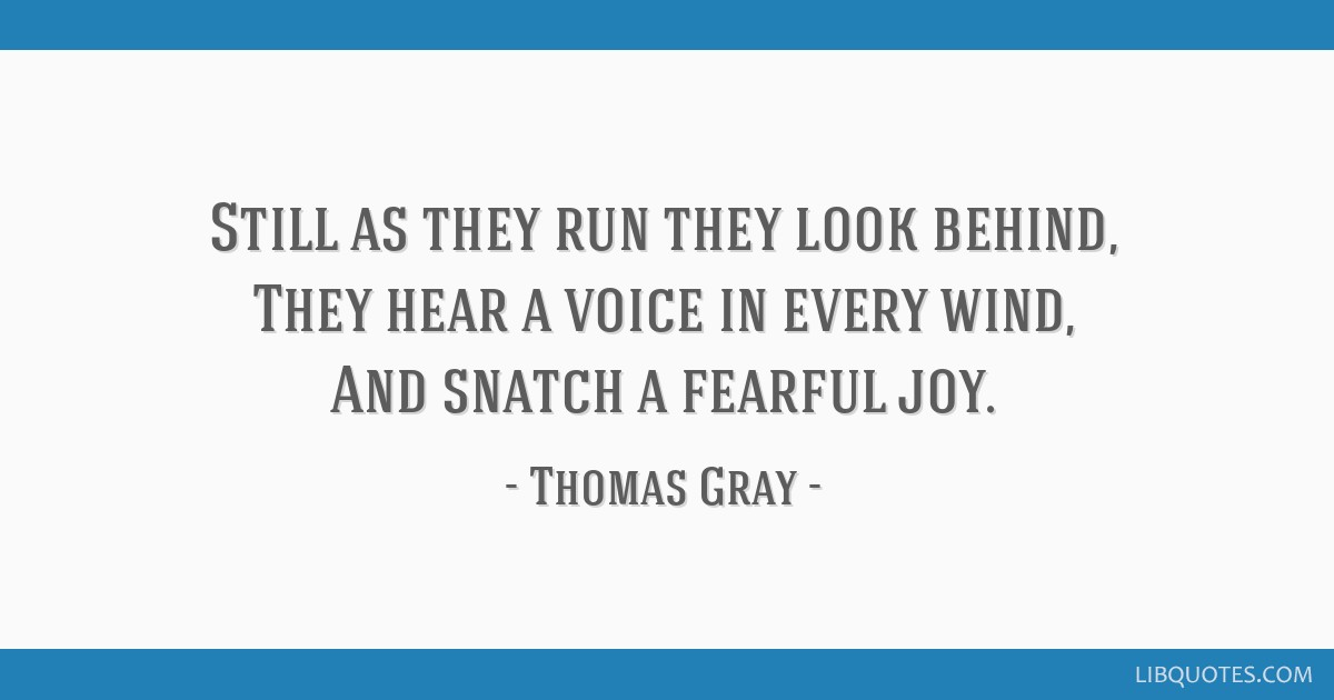 Still as they run they look behind, They hear a voice in every wind, And snatch a fearful joy.