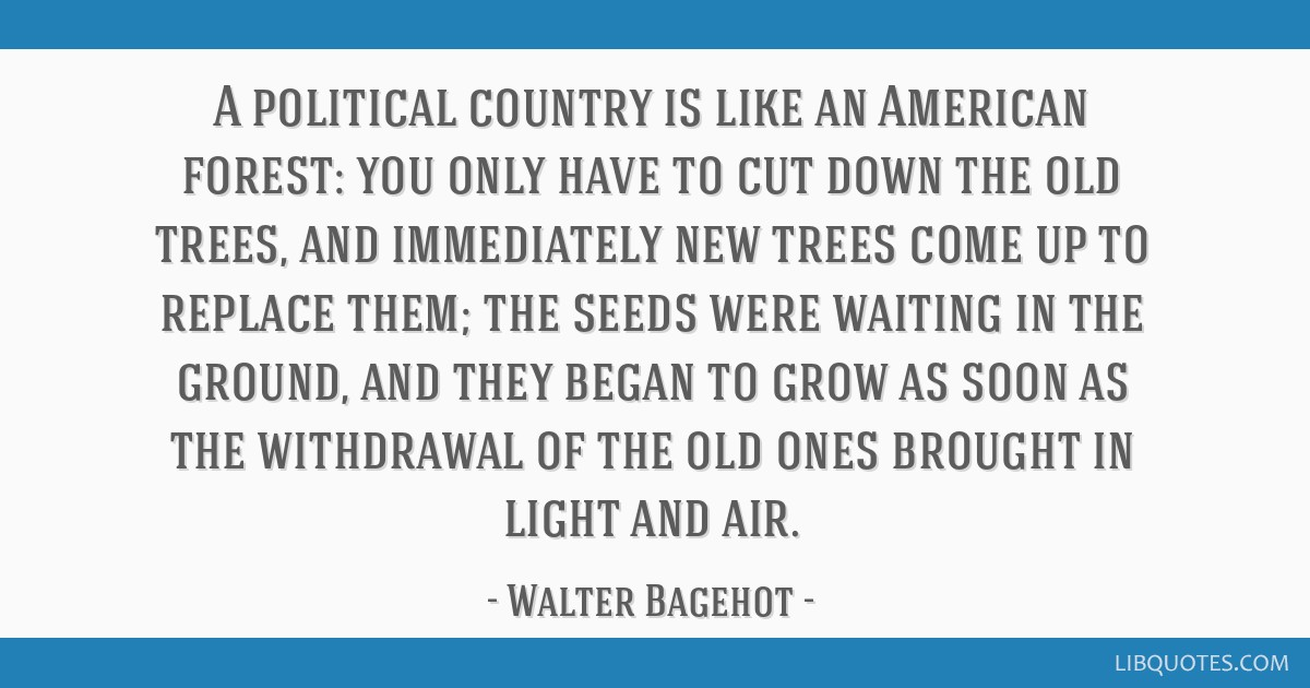 A political country is like an American forest: you only have to cut down the old trees, and immediately new trees come up to replace them; the seeds ...