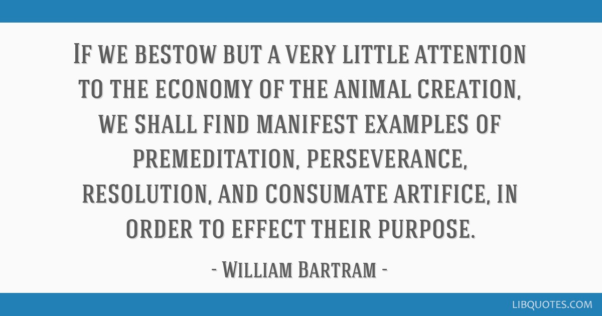 If we bestow but a very little attention to the economy of the animal creation, we shall find manifest examples of premeditation, perseverance,...