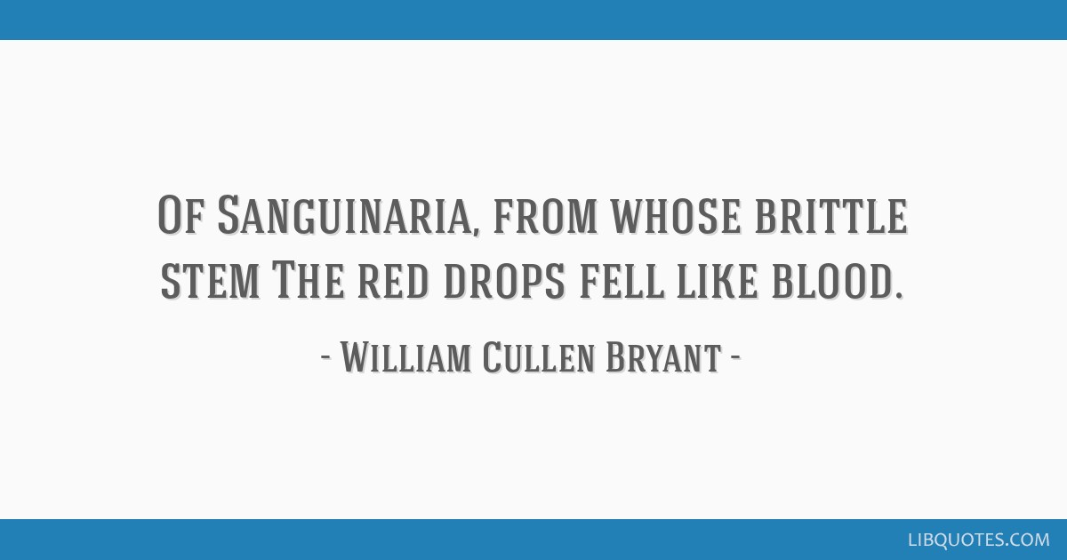 Of Sanguinaria, from whose brittle stem The red drops fell like blood.