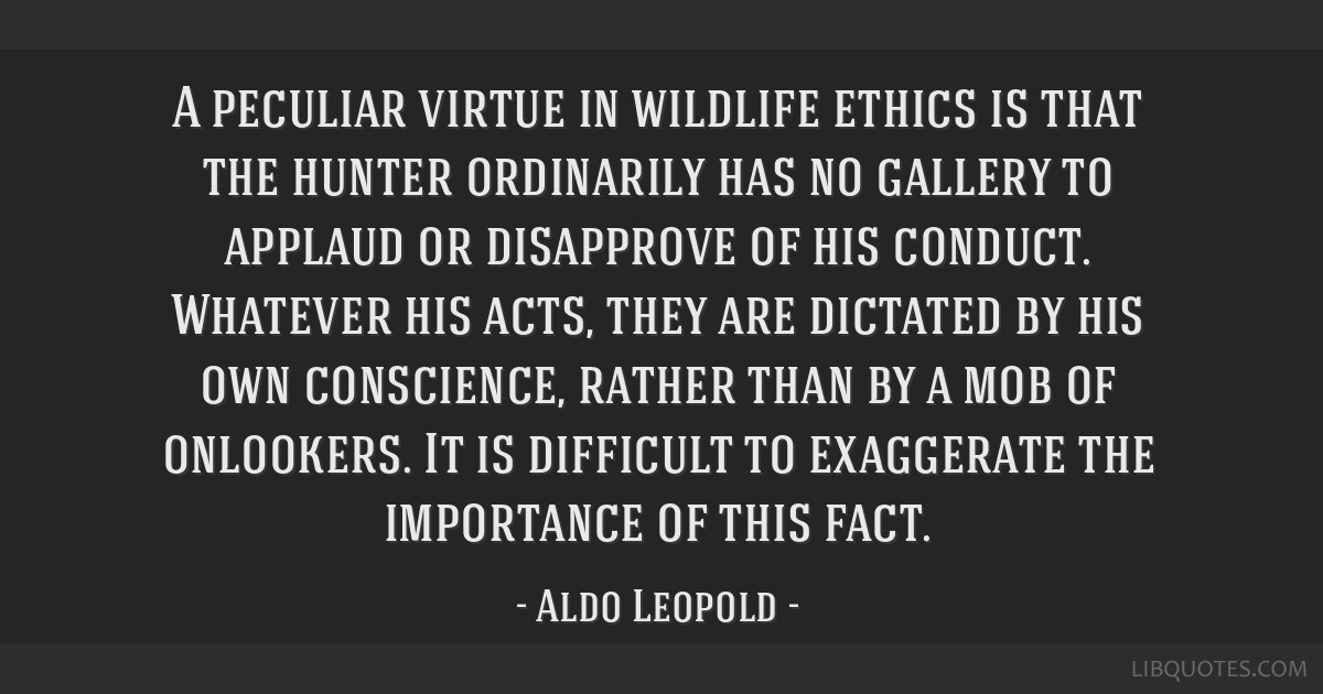 A peculiar virtue in wildlife ethics is that the hunter ordinarily has no gallery to applaud or disapprove of his conduct. Whatever his acts, they...