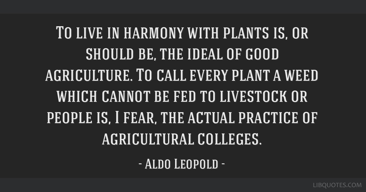 To live in harmony with plants is, or should be, the ideal of good agriculture. To call every plant a weed which cannot be fed to livestock or people ...