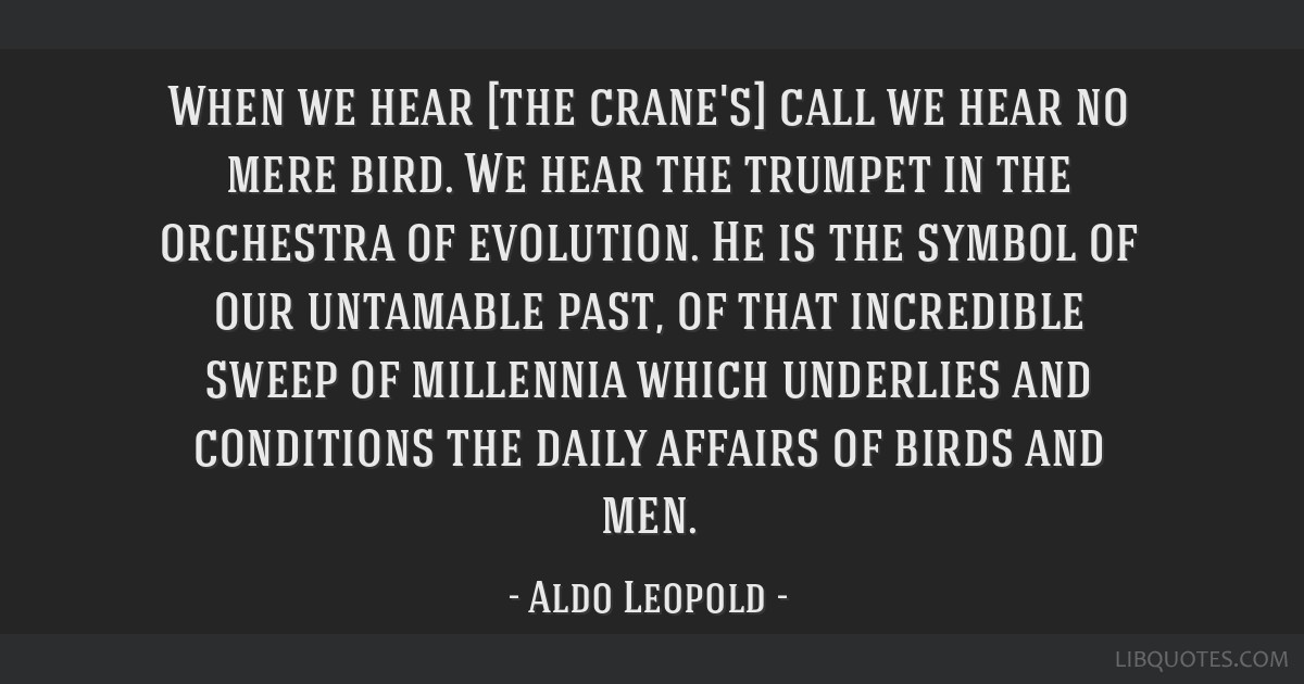 When we hear [the crane's] call we hear no mere bird. We hear the trumpet in the orchestra of evolution. He is the symbol of our untamable past, of...