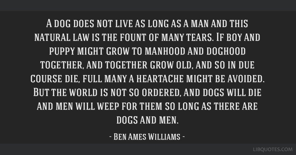 A dog does not live as long as a man and this natural law is the fount of many tears. If boy and puppy might grow to manhood and doghood together,...