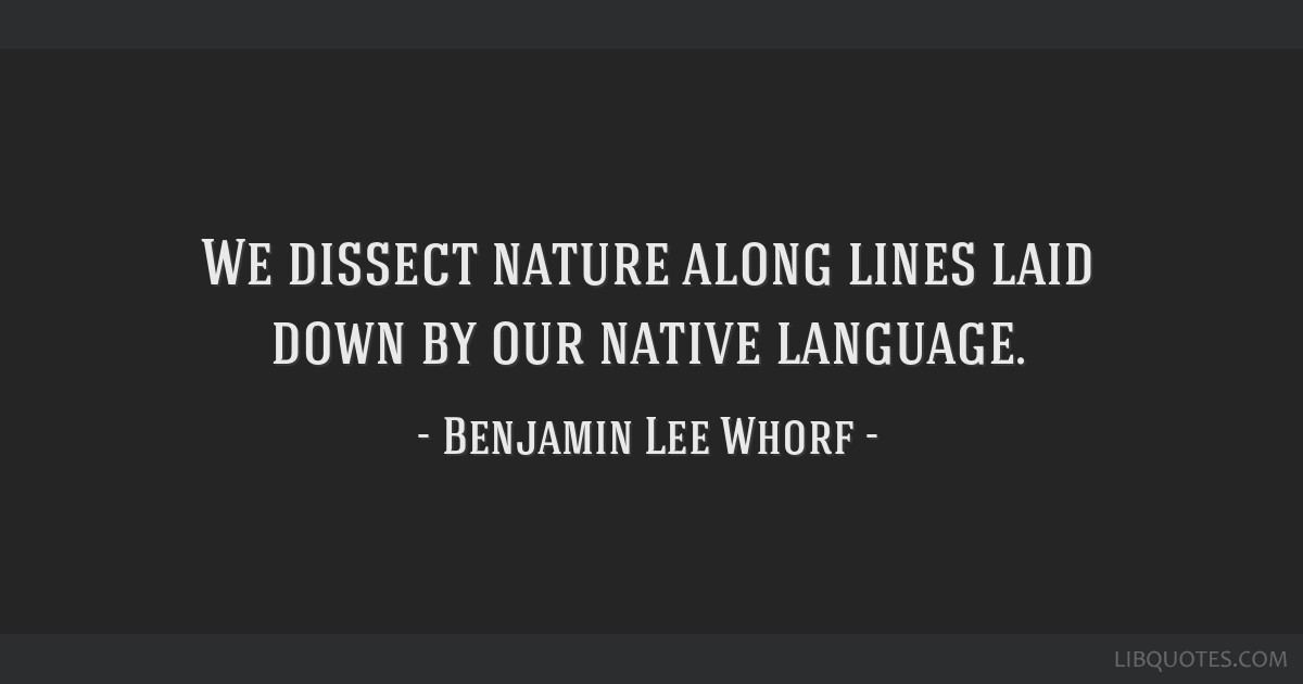 We dissect nature along lines laid down by our native language.