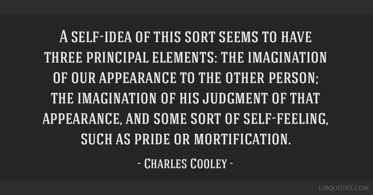 A self-idea of this sort seems to have three principal elements: the imagination of our appearance to the other person; the imagination of his...