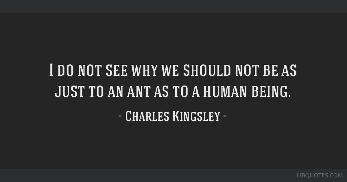 I do not see why we should not be as just to an ant as to a human being.