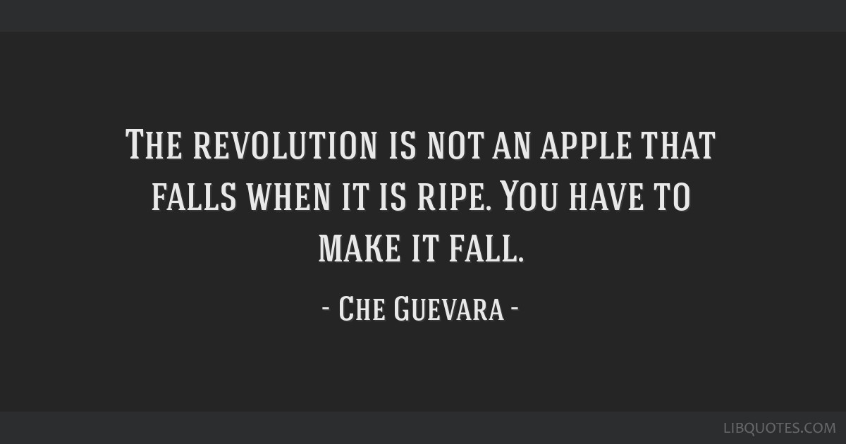 The revolution is not an apple that falls when it is ripe. You have to make it fall.