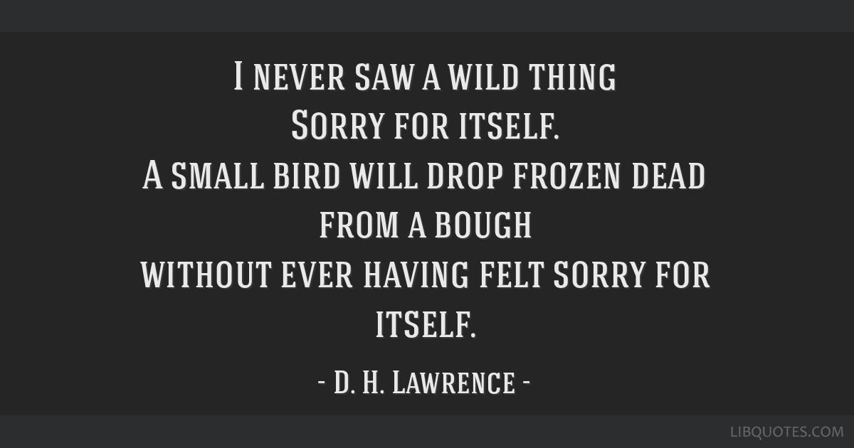 I never saw a wild thing Sorry for itself. A small bird will drop frozen dead from a bough without ever having felt sorry for itself.