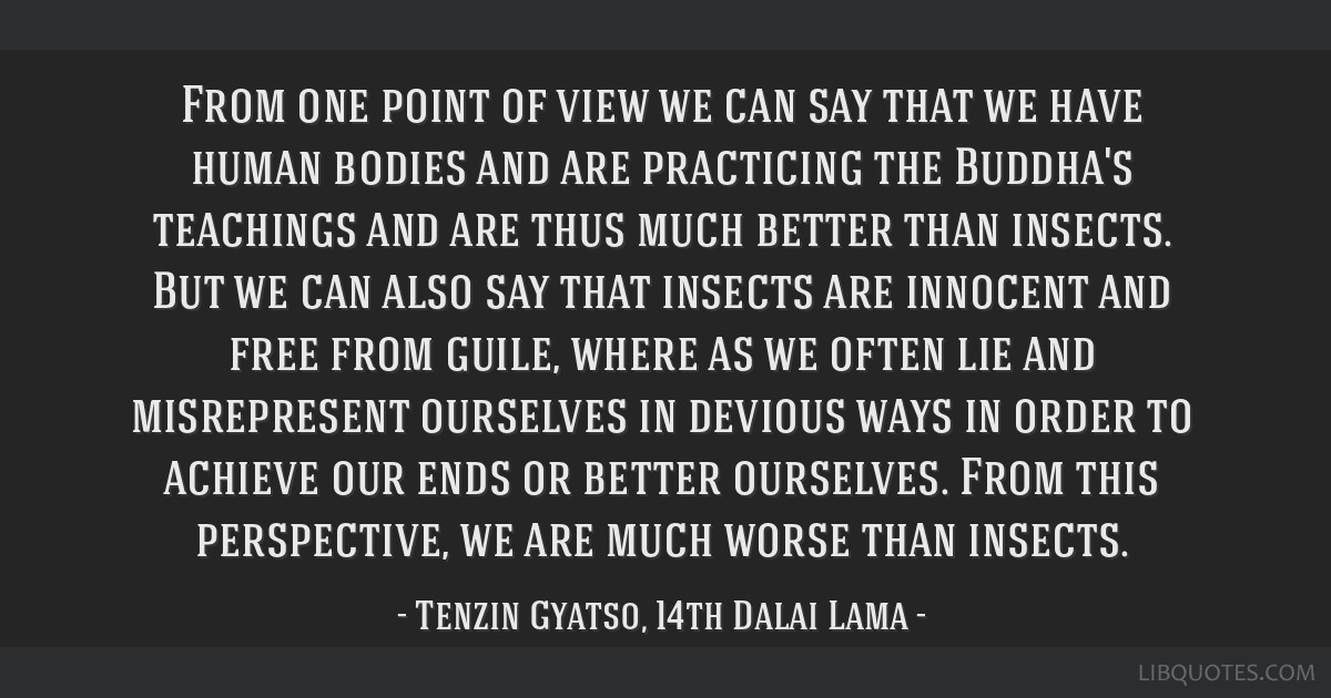 From one point of view we can say that we have human bodies and are practicing the Buddha's teachings and are thus much better than insects. But we...