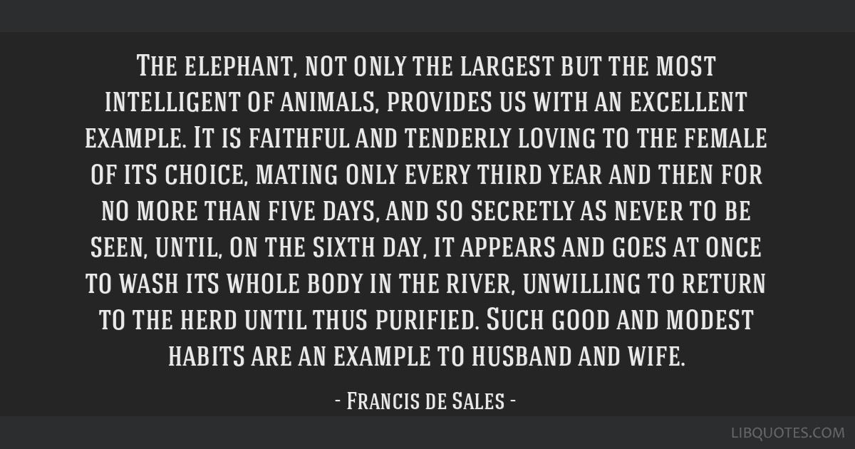 The elephant, not only the largest but the most intelligent of animals, provides us with an excellent example. It is faithful and tenderly loving to...