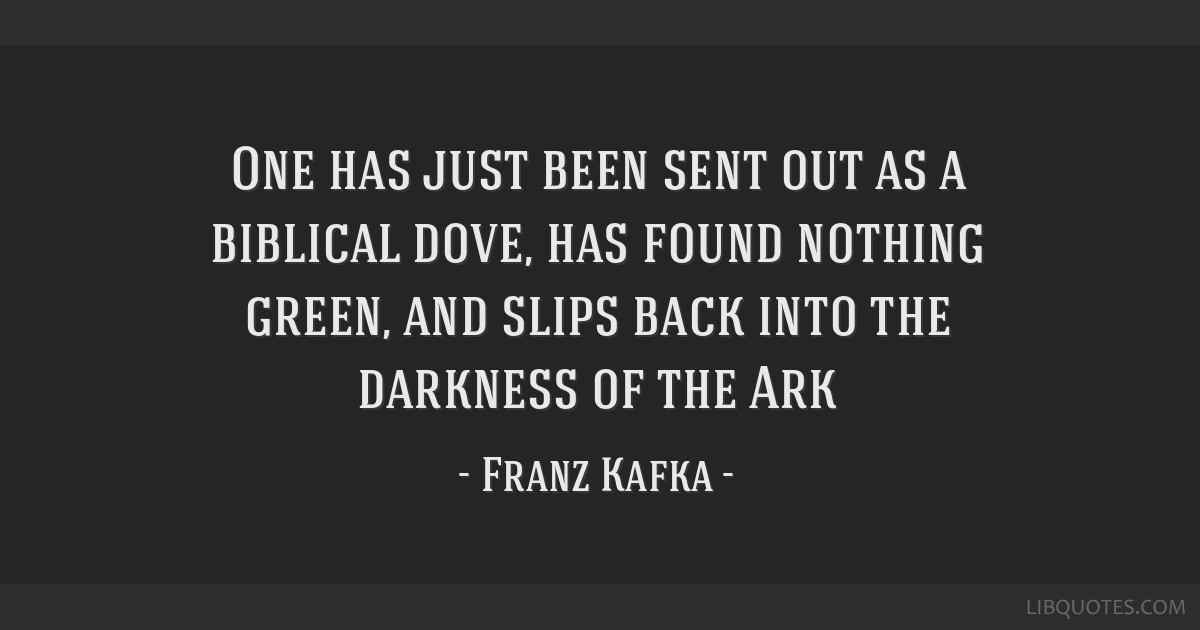 One has just been sent out as a biblical dove, has found nothing green, and slips back into the darkness of the Ark