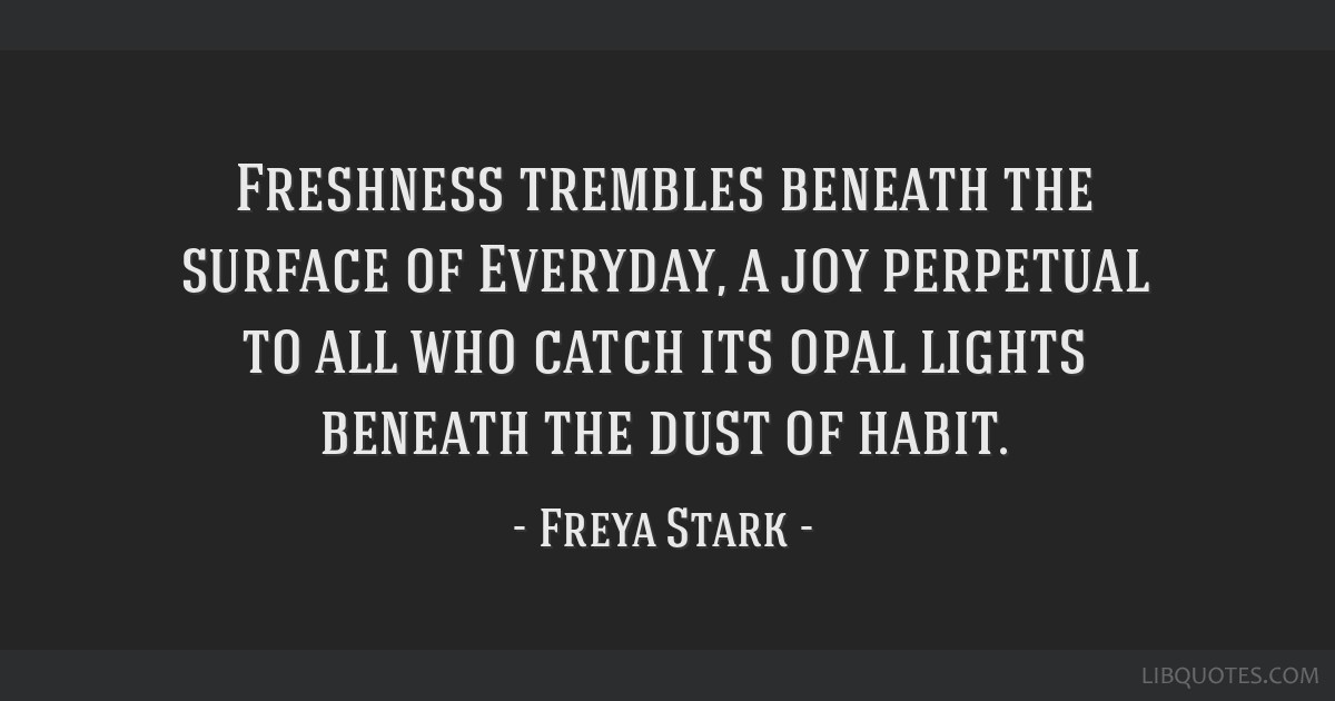 Freshness trembles beneath the surface of Everyday, a joy perpetual to all who catch its opal lights beneath the dust of habit.