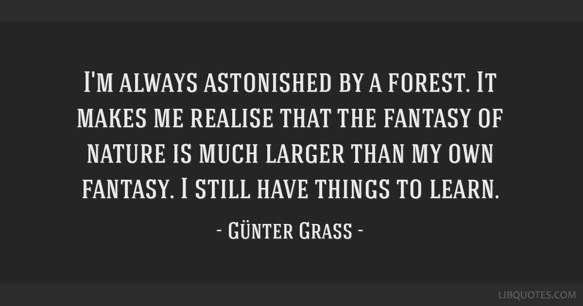 I'm always astonished by a forest. It makes me realise that the fantasy of nature is much larger than my own fantasy. I still have things to learn.