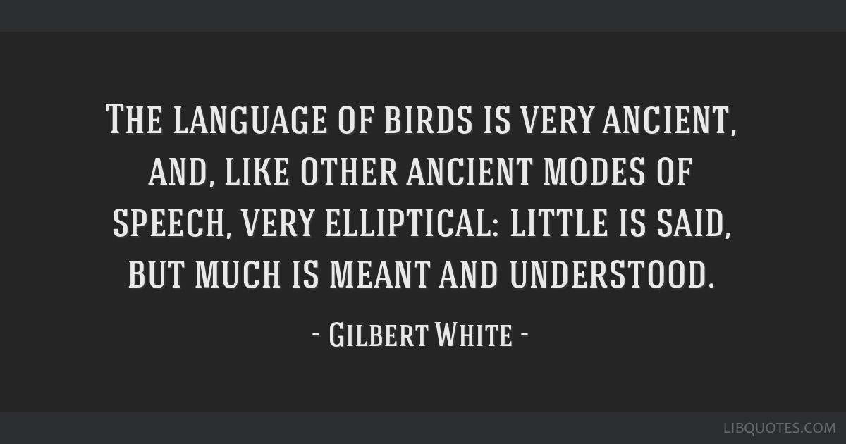 The language of birds is very ancient, and, like other ancient modes of speech, very elliptical: little is said, but much is meant and understood.