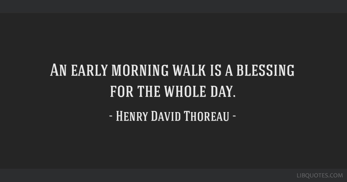 An early morning walk is a blessing for the whole day.