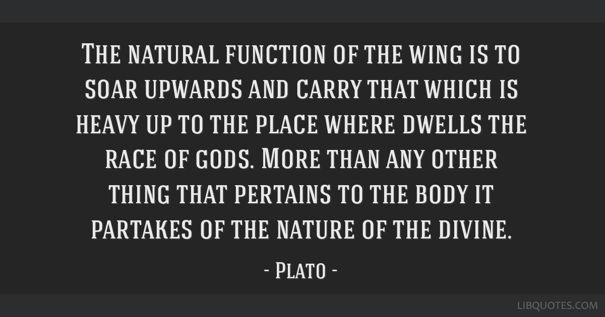 The natural function of the wing is to soar upwards and carry that which is heavy up to the place where dwells the race of gods. More than any other...