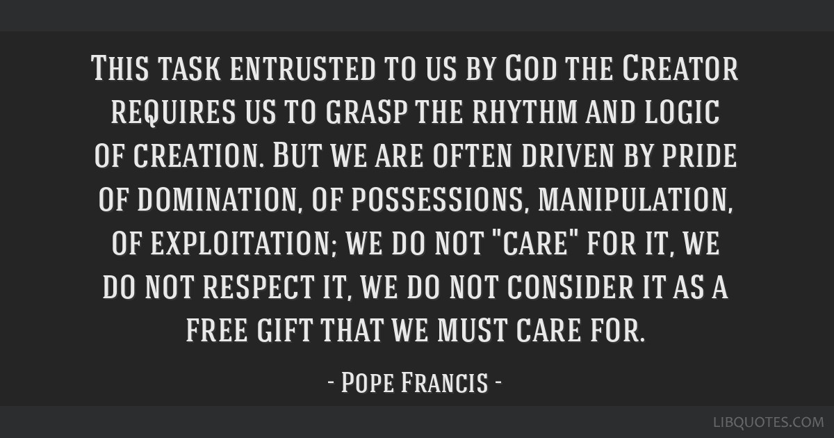 This task entrusted to us by God the Creator requires us to grasp the rhythm and logic of creation. But we are often driven by pride of domination,...