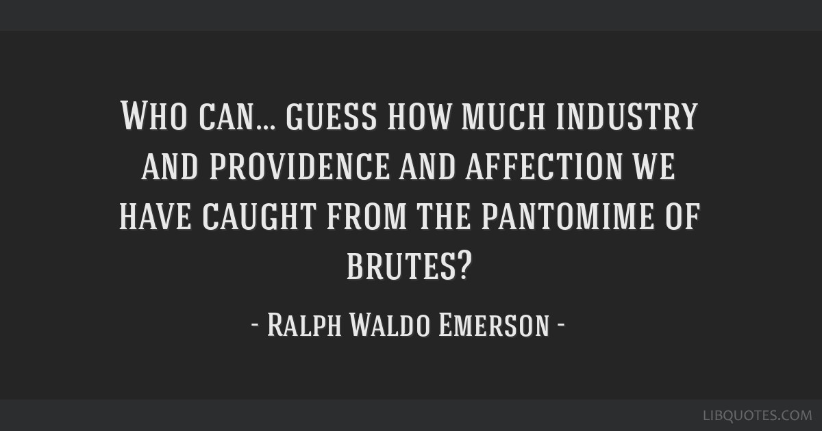 Who can... guess how much industry and providence and affection we have caught from the pantomime of brutes?
